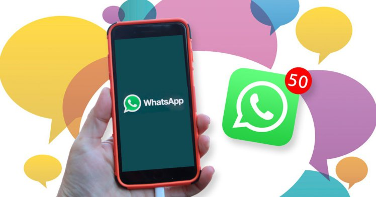 How to Export/download WhatsApp Contacts to PC/Computer