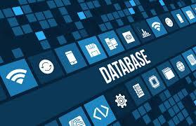 database4 (1)